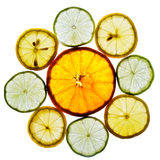 Circle Of Orange, Lime And Lemon Slices Royalty Free Stock Photos