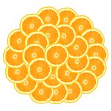 Circle from oranges Royalty Free Stock Photos