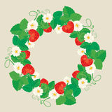 Circle ornament with Strawberries in heart shapes with flowers. And leaves isolated on gray background Stock Images