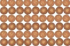 Circle pattern of cut palm stump Royalty Free Stock Photo