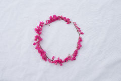 Circle pink flower frame of coral vine Royalty Free Stock Photo