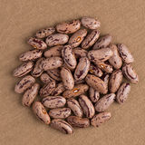 Circle of pinto beans Stock Photos