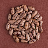 Circle of pinto beans Royalty Free Stock Image