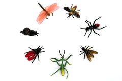 A circle of plastic bugs / insects. A circle / group of plastic toy bugs / insects Stock Photo