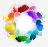 Circle of rainbow feathers. Circle of bright rainbow feathers on a light background stock illustration