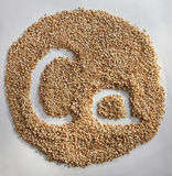 Circle from sesame seeds with letters Stock Photos