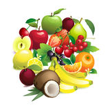Circle shape contains different fruits with leaves and flowers Stock Image