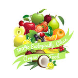 Circle shape contains different fruits with ribbon label. Vector Illustration of  Circle shape contains different fruits with ribbon label 100% ecologically Stock Photos