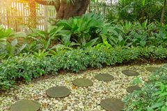 Circle shape of pattern walkway stepping sand stone on white gravel in a backyard garden of lush greenery plant, shurb and trees. Circle shape of pattern walkway royalty free stock photo