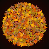 Circle shaped autumn leaves background Stock Photo