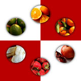 Circle shapes full of fruity textures. Collection of six circles with shadow and full of fruity textures: cut oranges, tangerines, sliced pomegranate royalty free stock photography