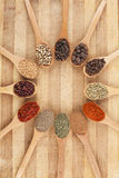 Circle of spices Stock Photography