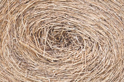 Circle of straw Stock Photo