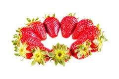 Circle of Strawberries Royalty Free Stock Photo