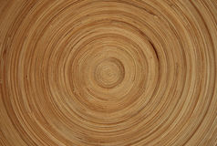 Circle Texture. Background and Texture royalty free stock photo