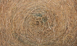 Circle thatch texture and wallpaper Stock Images