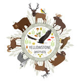 Circle vector template of Yellowstone National Park Royalty Free Stock Photography