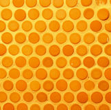 A circle wall background Royalty Free Stock Image