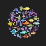 Circle from watercolor oceanic fishes, corals and seaweeds ornament. Hand painted on a dark background stock illustration