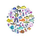 Circle from watercolor oceanic fishes, corals and seaweeds ornament. Hand painted on a white background vector illustration