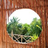 Circle window in tropical Jungle Stock Images