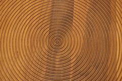 Circle wooden pattern background. Circle pattern on light wooden background texture stock photos
