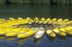 Circle of yellow Kayaks Stock Photography