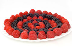Circles Of Berries Stock Photography