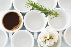 Circles. Empty Coffee cups with flower and rosemary Stock Photography