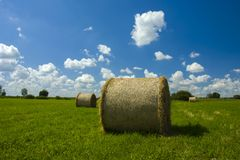 Circles of hay on a green meadow. Bales of mowed hay on a green meadow,blue sky and white clouds Royalty Free Stock Photography