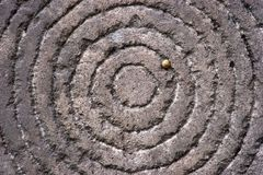 Circles on a stone with snake Royalty Free Stock Images