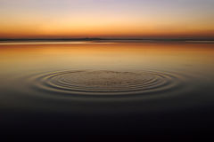Circles on the water Royalty Free Stock Photo
