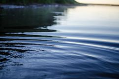 Circles on the water. Evening landscape. river. Circles on the water royalty free stock images