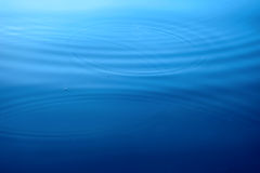 Circles on a water surface Royalty Free Stock Photography