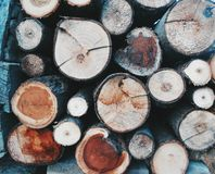 Circles. The wooden piles close up Royalty Free Stock Image