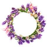 Circlet das flores, da alfazema e do trevo Imagens de Stock