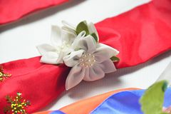 Circlet of flowers. Color circlet of flowers with long ribbons Stock Images