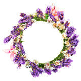 Circlet of flowers, lavender and clover. On white background Stock Images