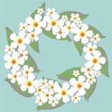 Circlet van bloemenachtergrond Royalty-vrije Stock Foto's