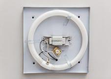 Circline Fluorescencyjna lampa obraz stock