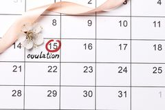 Circling the date Planning of pregnancy calendar stock photos