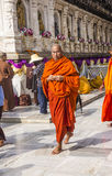Circling mahabodhi temple, India Royalty Free Stock Images