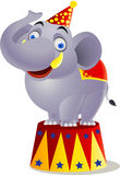 Circo do elefante Imagens de Stock Royalty Free