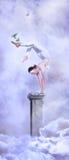 Circo en el cielo Foto de archivo libre de regalías