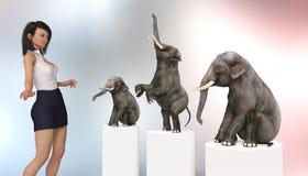 Circo femenino más doméstico con los elefantes enanos ilustración del vector