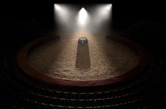 Circo Ring And Podium Imagens de Stock
