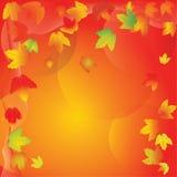 Circolazione astuta delle foglie di acero di autunno royalty illustrazione gratis