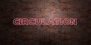 CIRCOLAZIONE - segno fluorescente del tubo al neon su muratura - vista frontale - 3D ha reso l'immagine di riserva libera della s illustrazione vettoriale