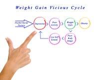 Circolo vizioso di obesità immagini stock