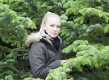 Circondato dagli alberi Fotografie Stock